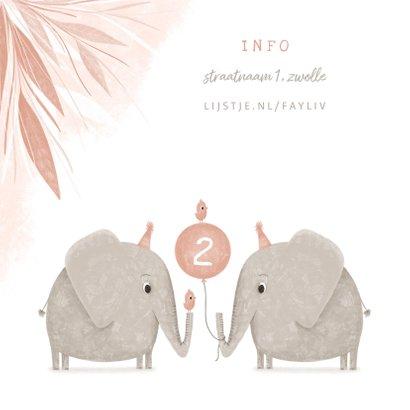 Kinderfeestje tweeling olifant met vogeltjes en ballon 2