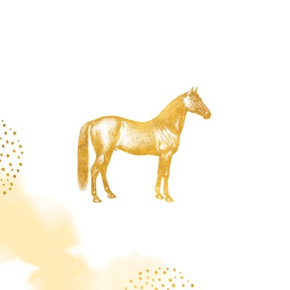 Kinderfeestje uitnodiging met foto, paard en kroontje 2