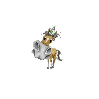 Kinderfeestje uitnodigingen paardenfeestje Achterkant