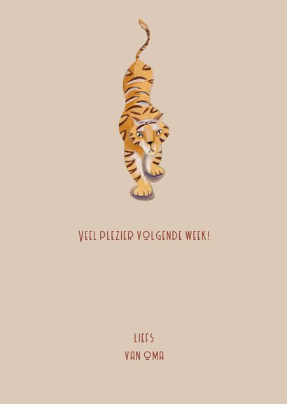 Kinderkaart Gladiators met tijger in de Arena  3