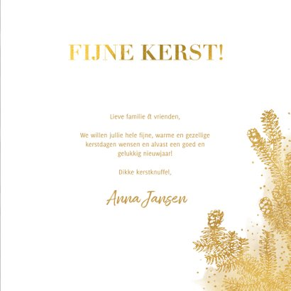 Klassieke kerstkaart met grote foto gouden dennentak & kader 3