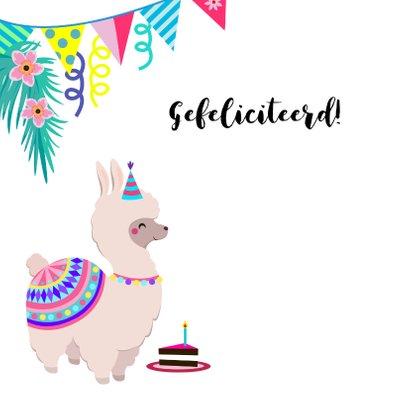 Kleurrijke en vrolijke alpaca verjaardagskaart 2