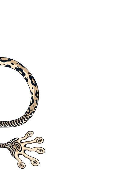 Kunstkaart van een tarsier diertje met doolhof print 2