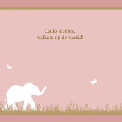 Leuk geboortekaartje met olifantje voor geboorte dochter 2