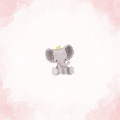 Lief geboortekaartje meisje met olifant en kroontje Achterkant