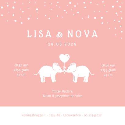 Lief geboortekaartje meisjes tweeling met 2 olifantjes  3