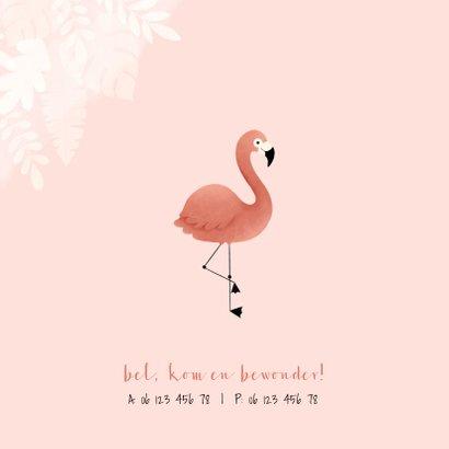 Lief geboortekaartje met flamingo, jungle en waterverf 2
