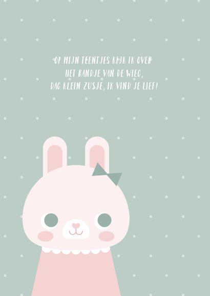 Lief geboortekaartje met konijn en stipjes meisje 2