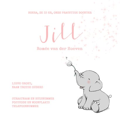 Lief geboortekaartje met olifantje en wensbloem meisje 3