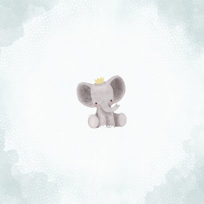 Lief geboortekaartje olifantje met kroontje en waterverf Achterkant