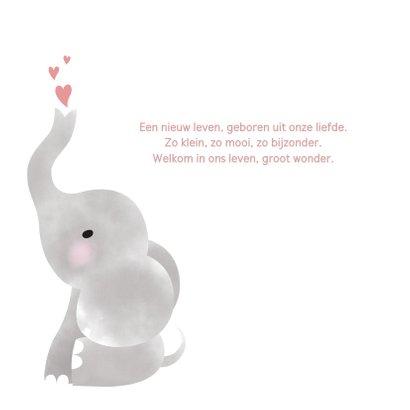 Lief geboortekaartje olifantje waterverf voor meisje 2