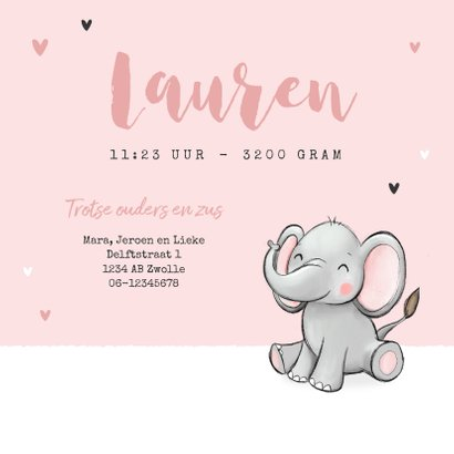 Lief geboortekaartje olifantjes meisje zusje hartjes roze 3