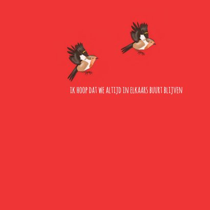 Liefde - twee roodborstjes 3
