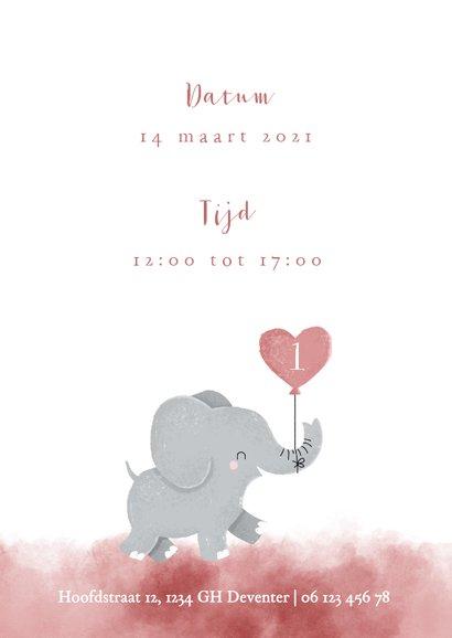 Lieve uitnodiging kinderfeestje voor tweeling met olifantje 2