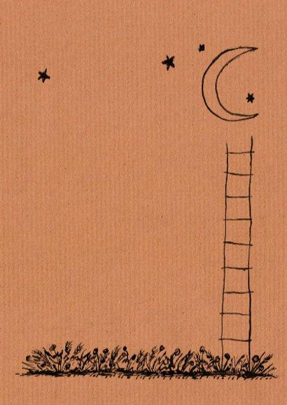 Met een trapje naar de maan 3