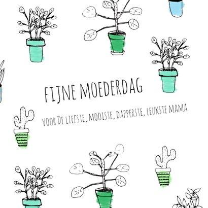 Moederdag planten - SV 2