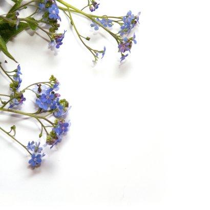 Moederdagkaart paarse bloemen 2
