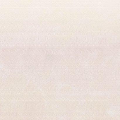 Mooie rouwkaart met papaver op gewassen achtergrond en foto 2