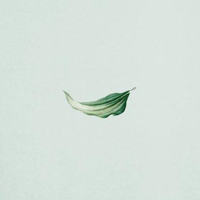 Mr and Mrs trouwkaart botanisch groen bladeren stijlvol Achterkant