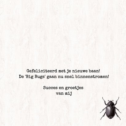 Nieuwe baan - MAKING THE BIG BUGS! 3