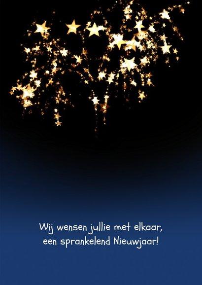Nieuwjaarskaart Loeki proost Champagne - A 3