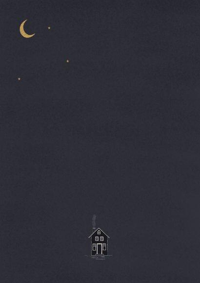 Nieuwsjaarskaart - Sneeuwbol met vuurwerk Achterkant