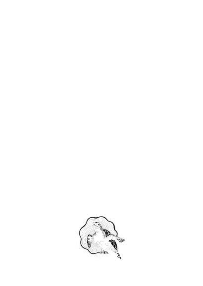 Orinele kaart met Schildpad illustratie zwart-wit 2