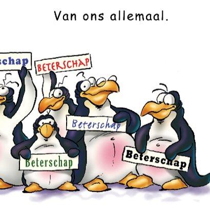 Pinguins beterschap in verband 3