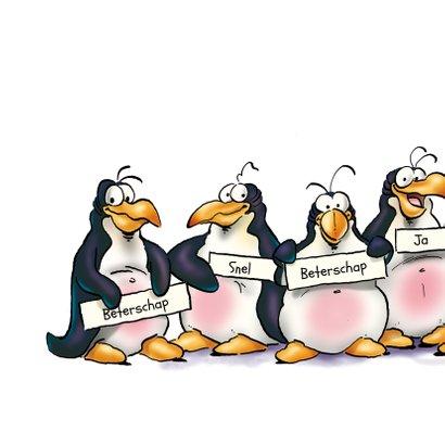 Penguins beterschap 3 dieren op ijsschots 2
