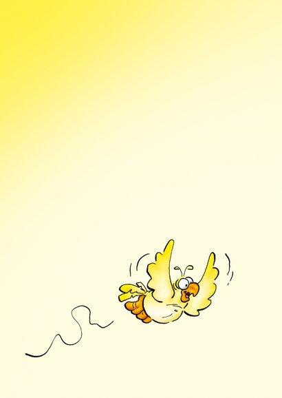 Rocco leeftijd 3 papegaai met ballonnen RN. 2
