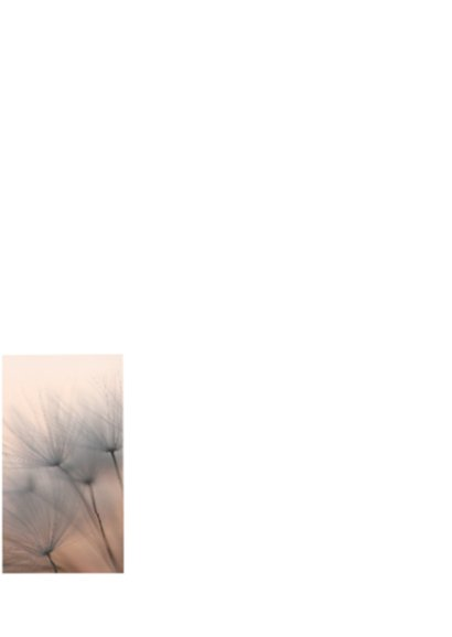 Rouw- bedankkaart pluis zonsondergang 2