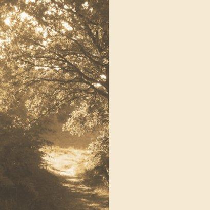 rouwkaart bospad in zon bedankt 2