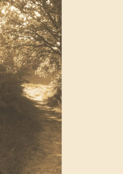 rouwkaart bospad in zon 2