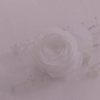 rouwkaart foto witte roos Achterkant