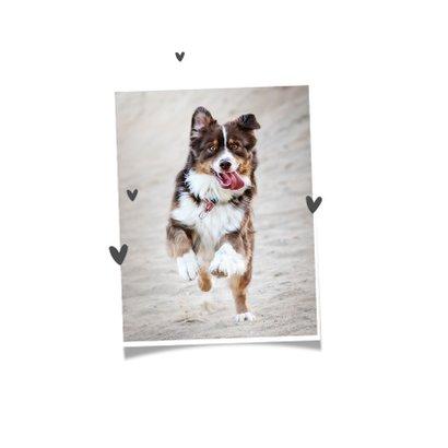 Rouwkaart hond goud pootjes foto hartjes 2