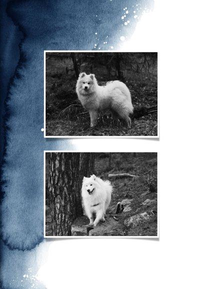 Rouwkaart hond stijlvol verf goud foto hondenpootje 2