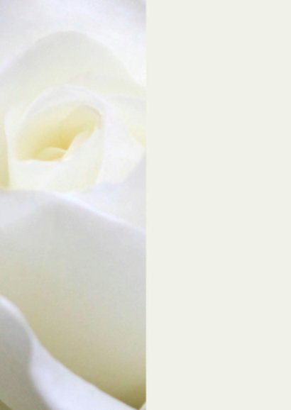 rouwkaart roos staand 2