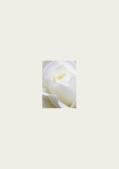 rouwkaart roos staand Achterkant