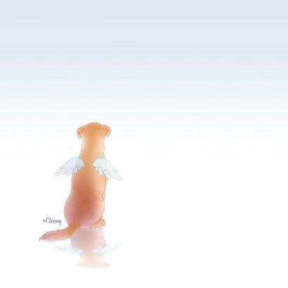 Rouwkaarten hond engel huisdier 2