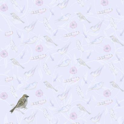 Sterkte vogeltje en veertjes 2