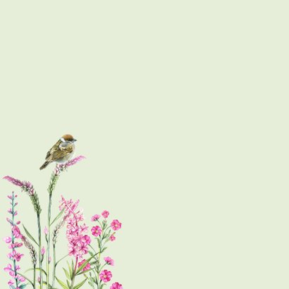 Sterkte vogeltjes bloemen 2