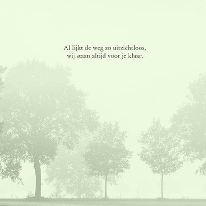 Sterktekaart Hollands landschap 3