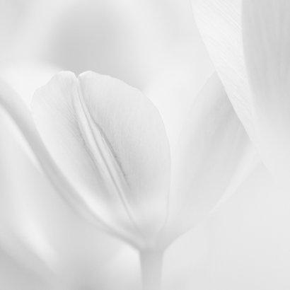 Sterktekaart tulpen 2