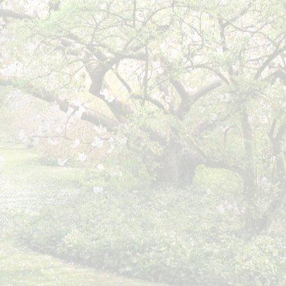 Trouwen met witte oldtimer-kleur 3