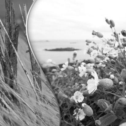 Trouwkaart bloemen en strand 2