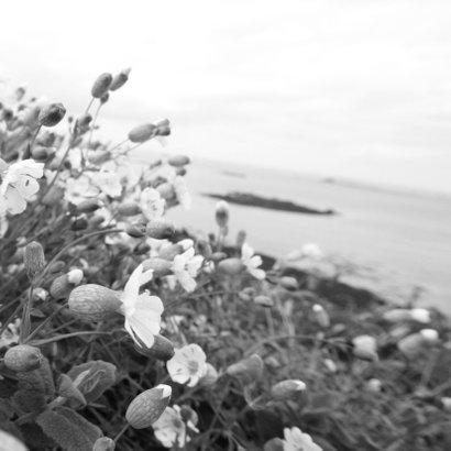 Trouwkaart bloemen en strand Achterkant