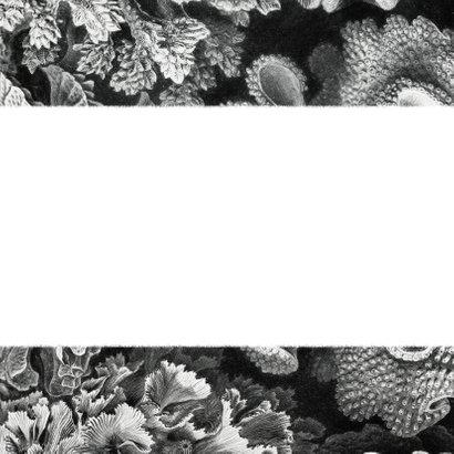 Trouwkaart tijdlijn zwart wit koraal onderwater planning Achterkant