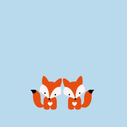 Tweeling vosjes, jongens 2