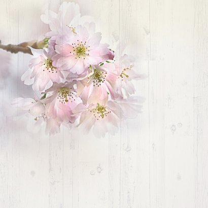 Uitnodiging lentebloesem op hout 2