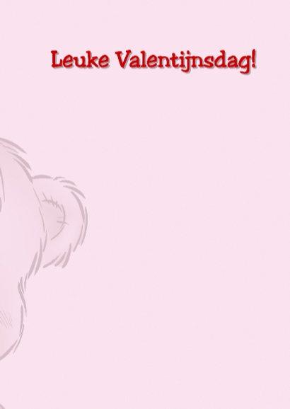 Valentijn 8 beer met hart op rug 3